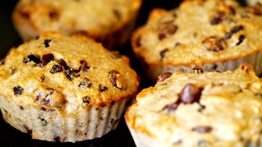 Gluten Free Fruit Nut Coconut Chocolate Muffins