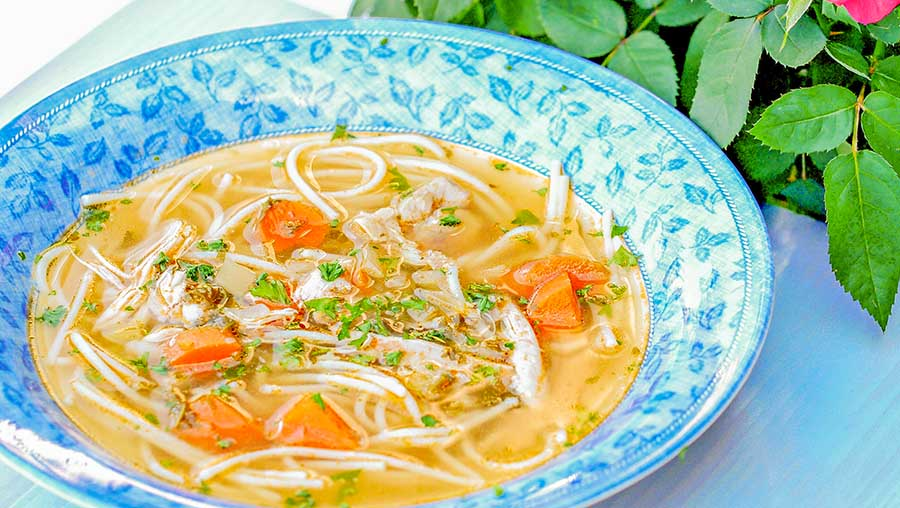 chicken, soup