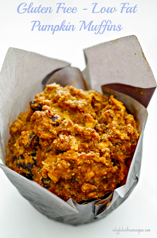 Gluten Free – Low Fat Pumpkin Muffins