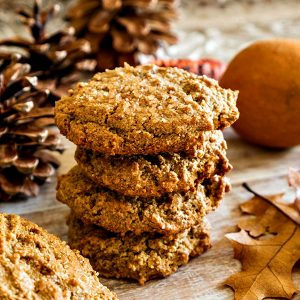 Gluten Free Grain Free Gingerbread Cookies