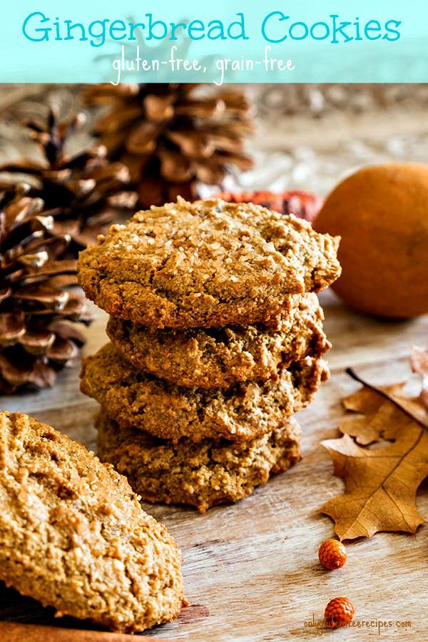 Gluten Free Grain Free Gingerbread Cookies