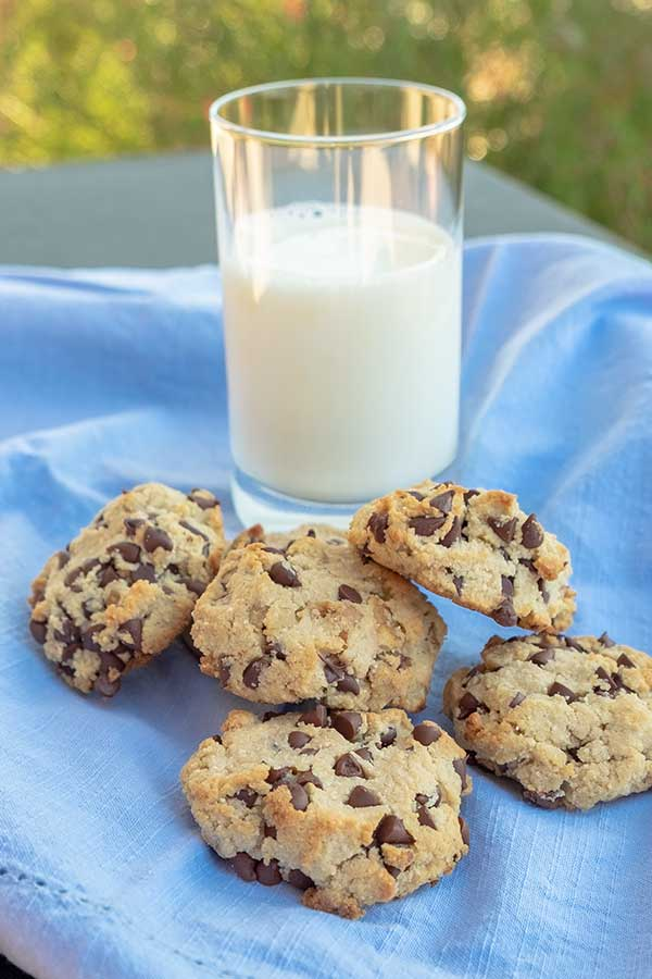 chocolate chip walnut cookie, keto