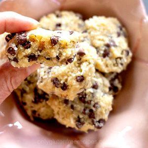 6 Ingredient Grain-Free Coconut Chocolate Chip Cookies