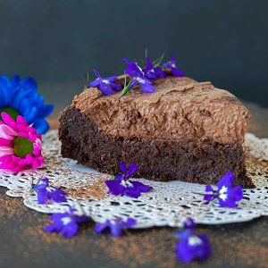 2 Layer Grain-Free Chocolate Cake (Gluten-Free, Nut Free)
