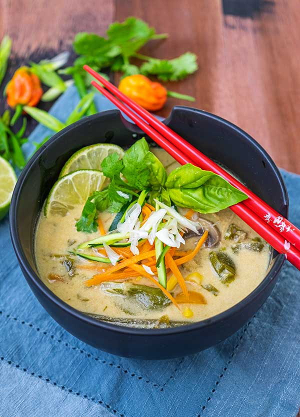 Instant Pot Thai Chicken Vegetable Soup