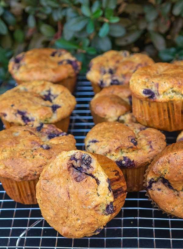 chia muffin, gluten free