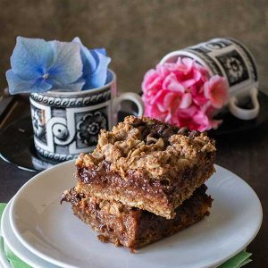 Gluten-Free Chocolate Mocha Oat Bars