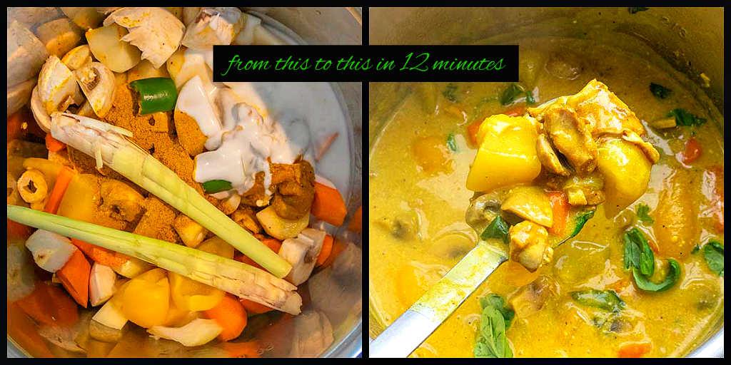 Vietnamese chicken curry