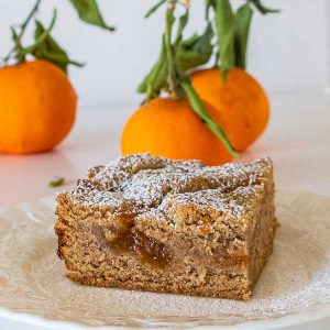 Gluten-Free Apricot Linzer Squares
