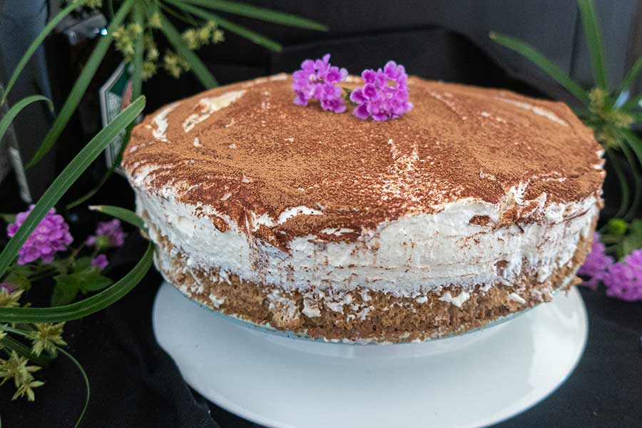 Irish cream tiramisu cake, gluten free