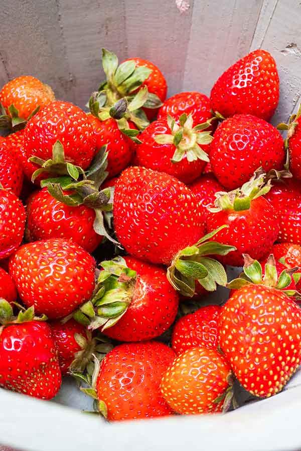 organic vs conventional strawberries